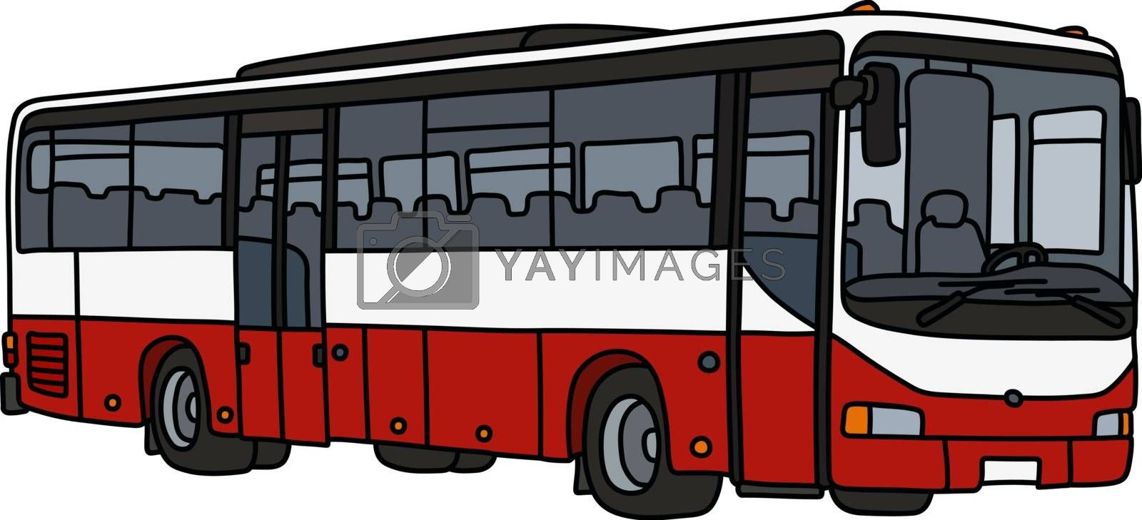 The vectorized hand drawing of a red and white bus