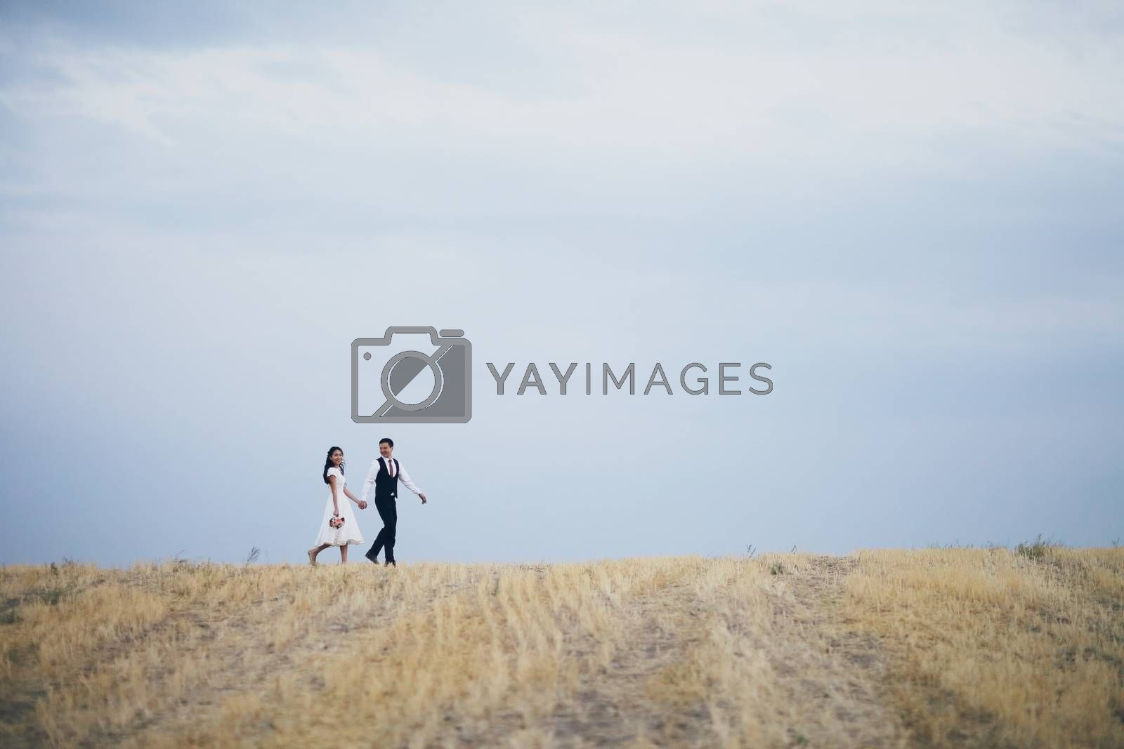 The bride and groom hold hands, hug each other and walk in the park. wedding. High quality photo