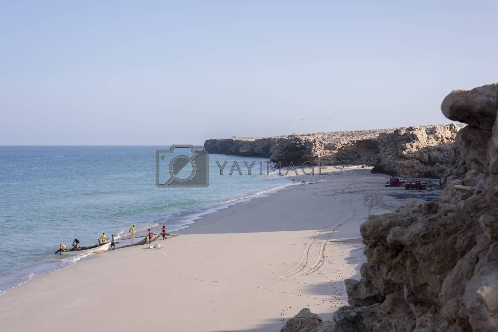 Fishermen pulling their net on the beach of Ras Al Jinz, Oman