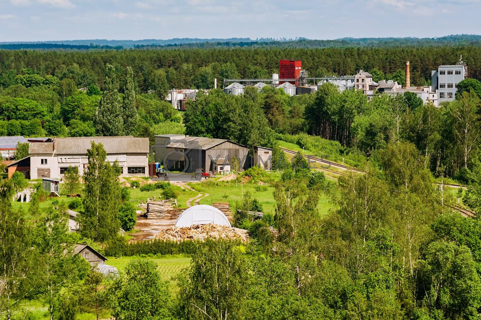 Industrial enterprises in the forest