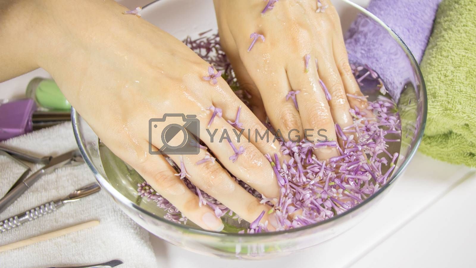 Manicure, nail SPA. Hands of a woman in a bath with flowers. Sensuality, skincare, feminine, salon, wash, wealth, therapy, cosmetics, treatment, relax, dayspa, aromatherapy