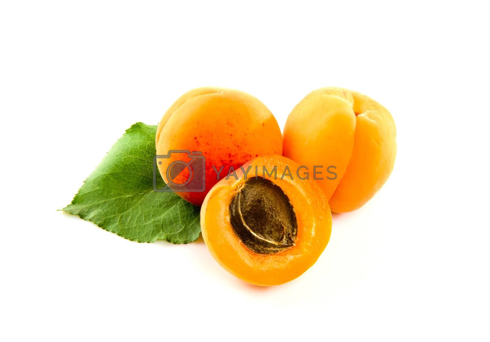 Fresh ripe apricot isolated on white background.