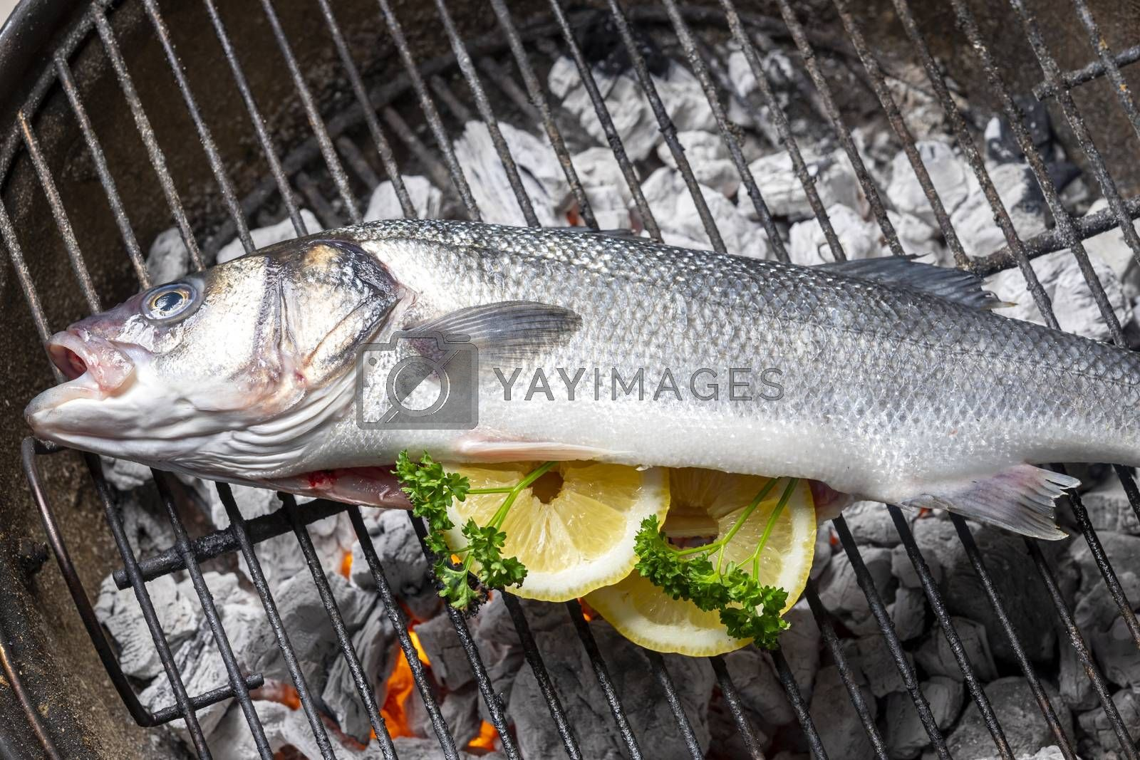 bass with lemon on the bbq