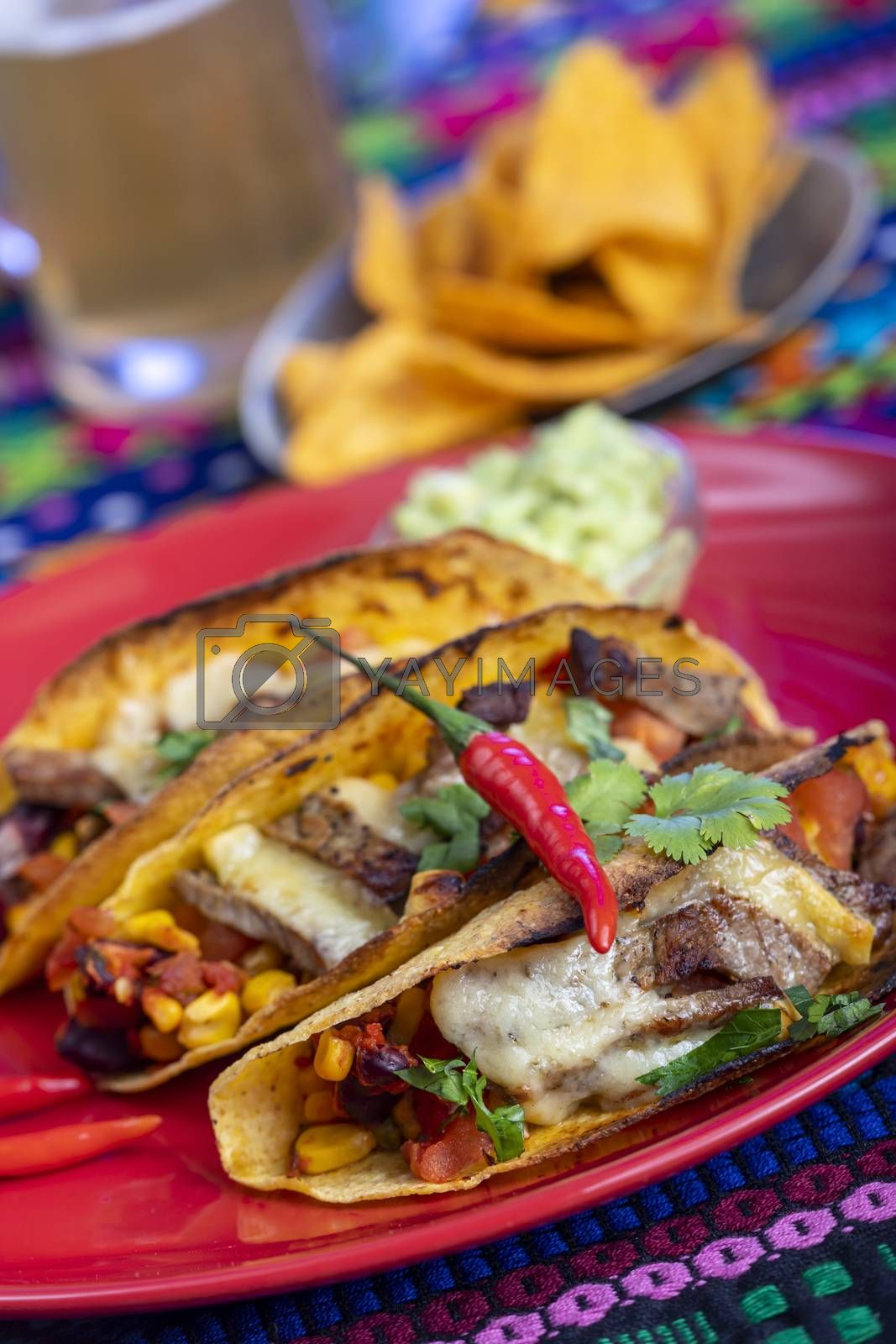 grilled mexican tacos on a plate