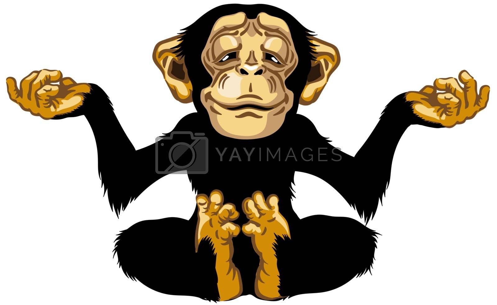 cartoon chimp great ape or chimpanzee monkey sitting in lotus yoga position and meditating. Calm and peaceful emotion. Front view. Isolated vector illustration