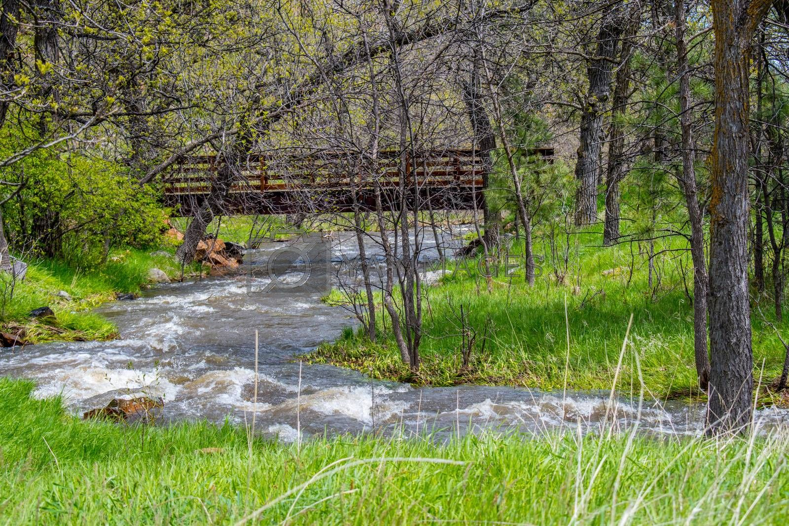The refreshing flow of natural water resource coming from the Cheyenne River