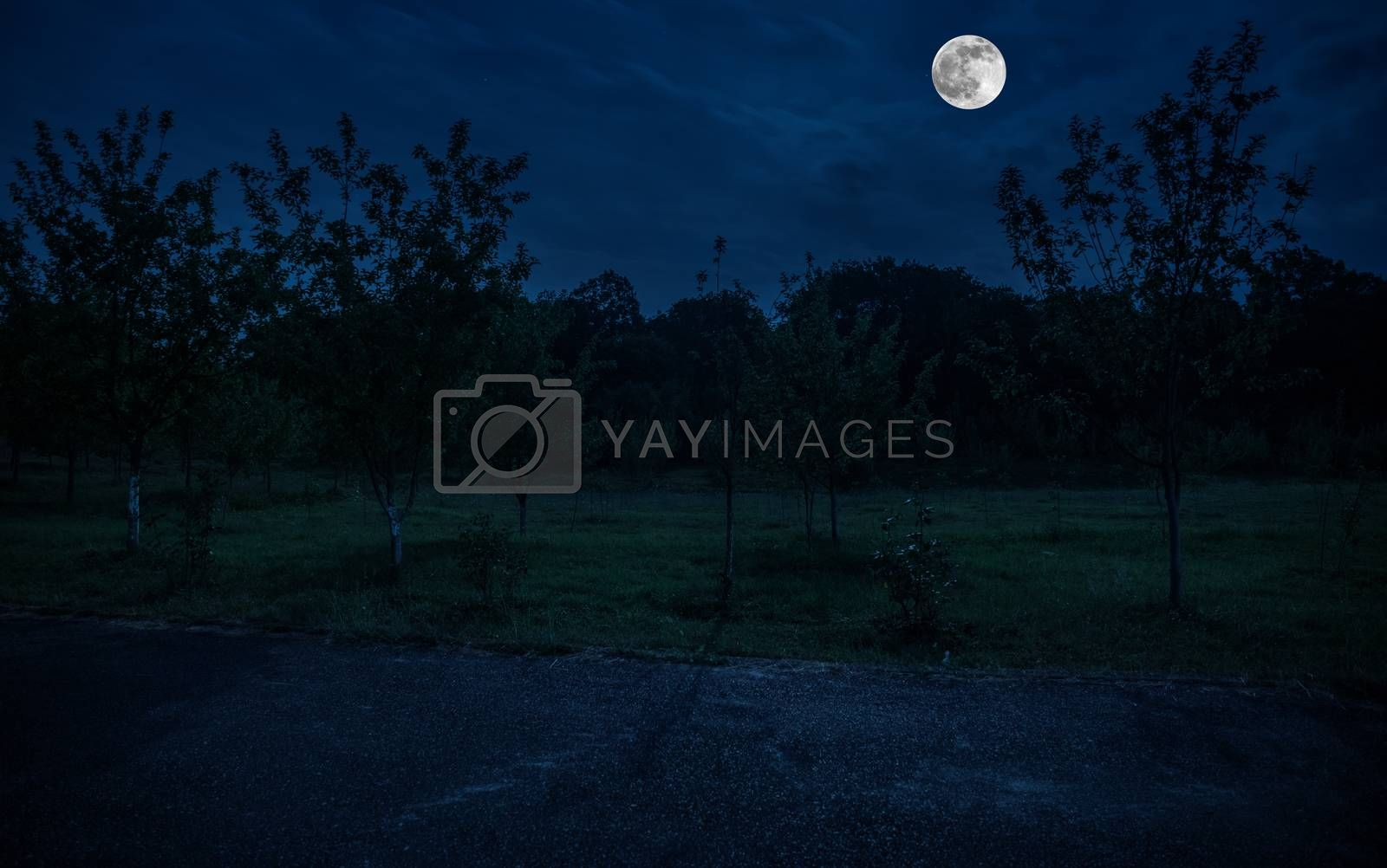 Mountain Road through the forest on a full moon night. Scenic night landscape of dark blue sky with moon
