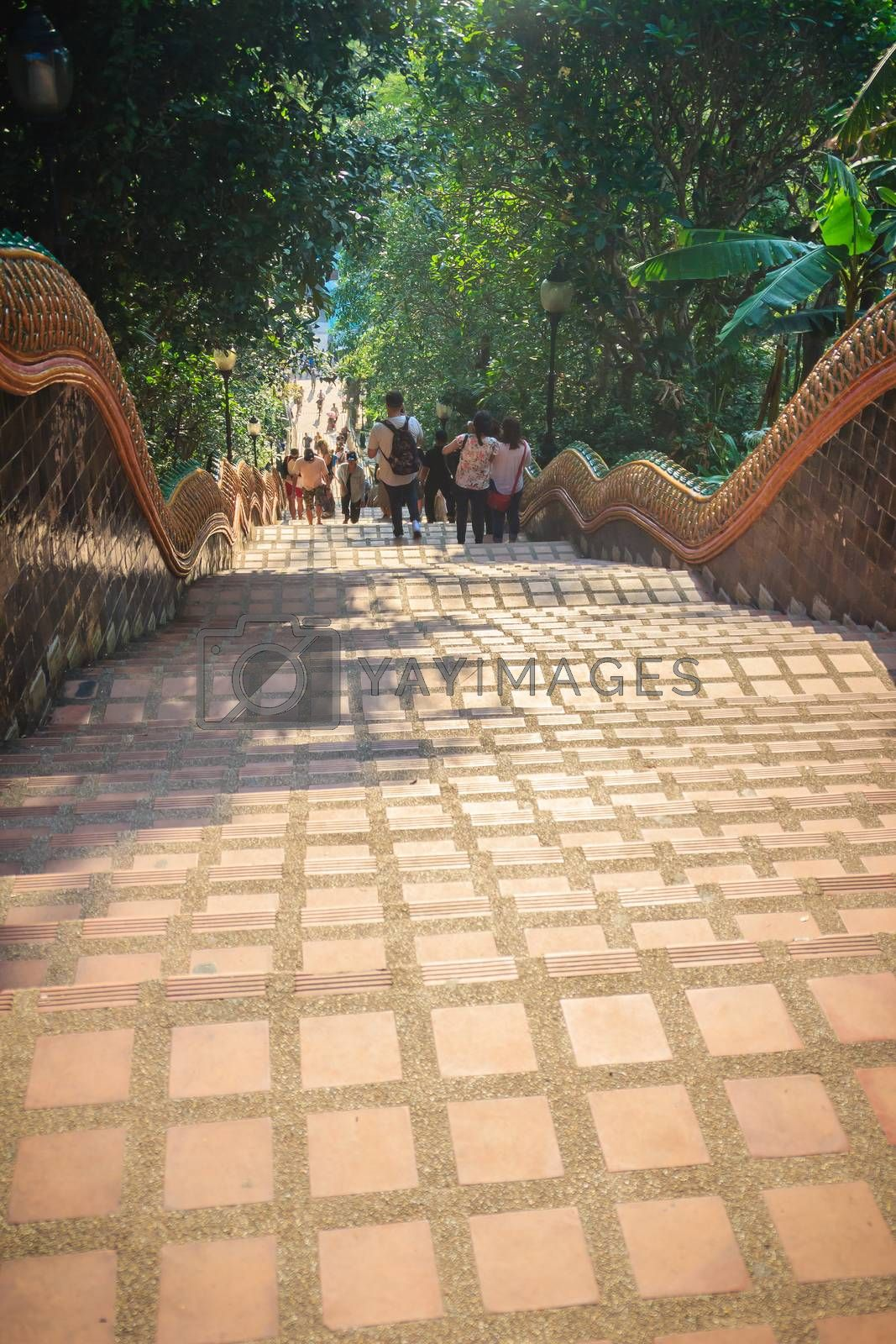 Chiang Mai, Thailand - May 3, 2017: Tourist are walking down the naga stairs after worship to the golden chedi at Wat Phra That Doi Suthep, the famous temple and became the landmark of Chiang Mai.