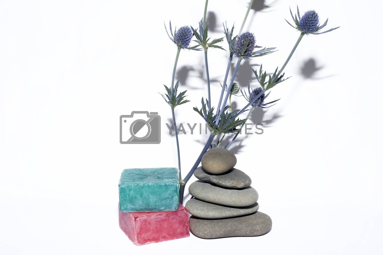 soaps off various shades with grey sone pebbles and lavender