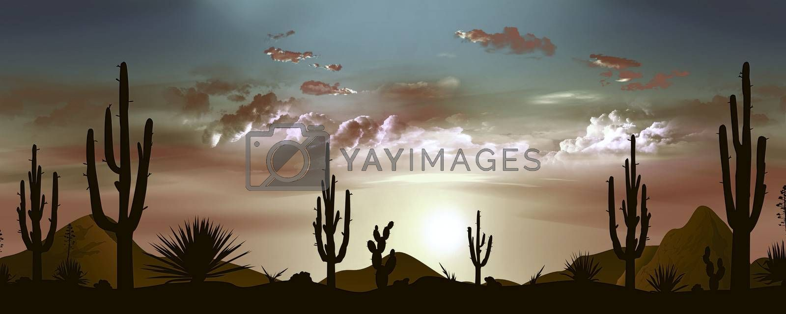 Beautiful Mexican desert landscape in the evening  by liolle