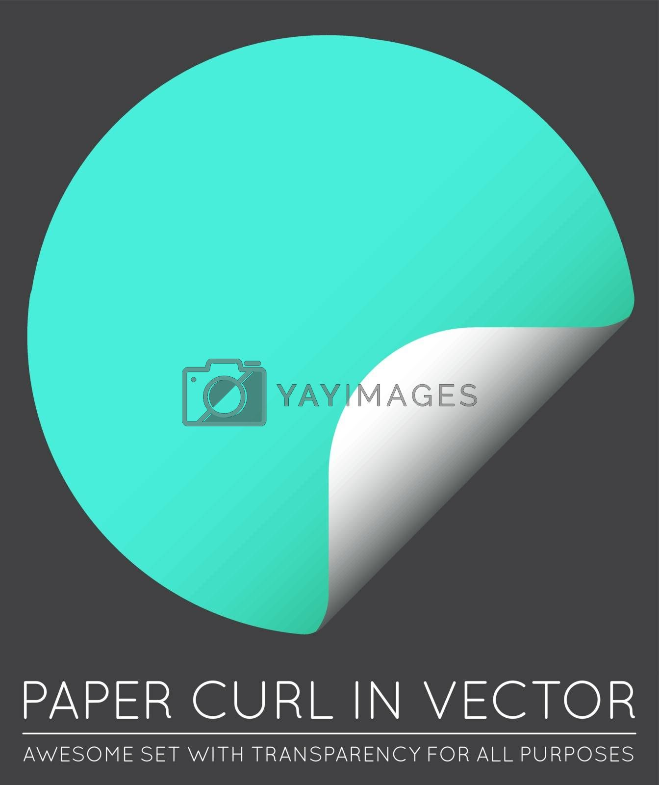 Vector Sticker with Paper Curl with Shadow Isolated.