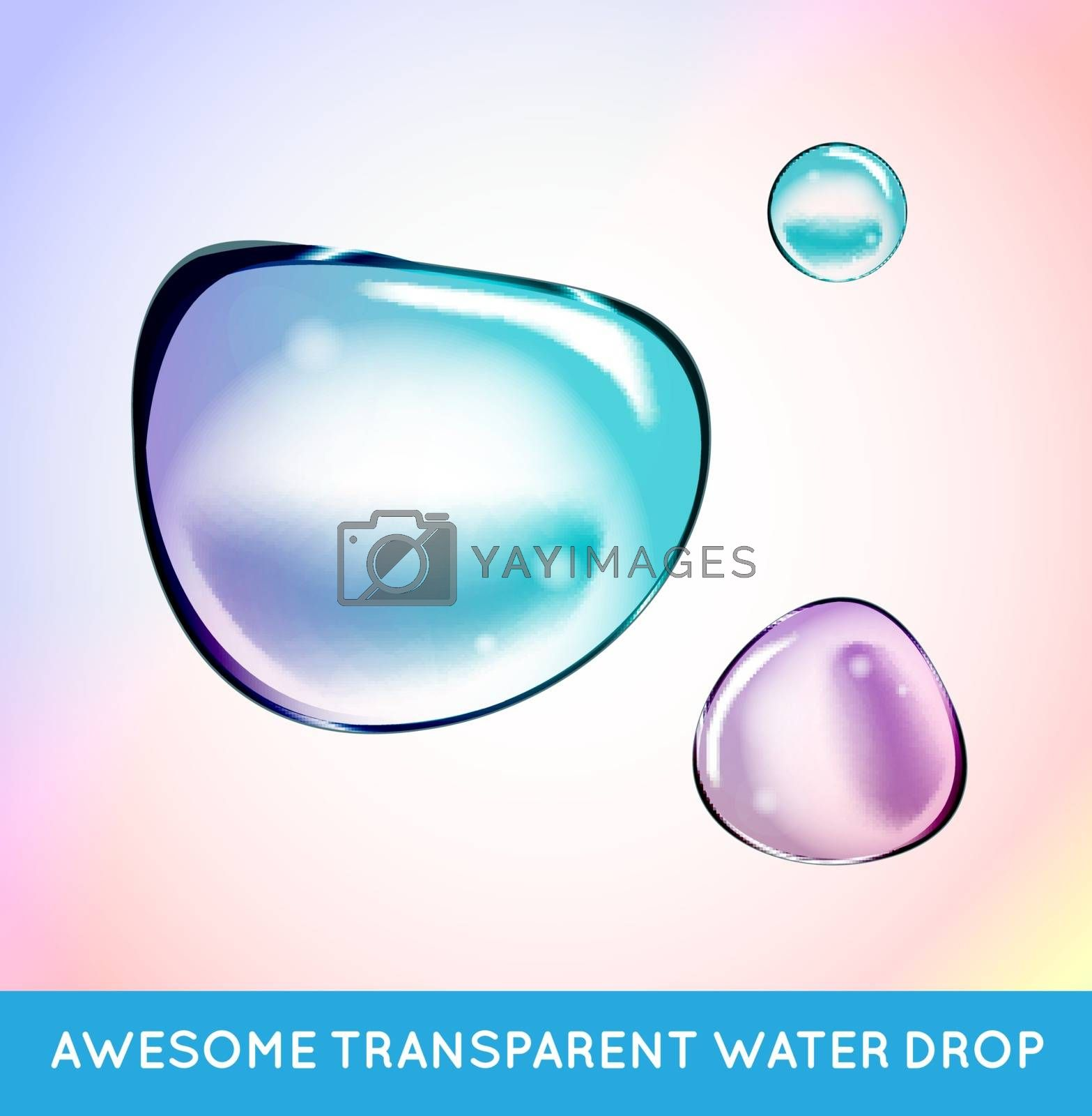 Vector Rainbow Soap Water Bubbles Set. Transparent Isolated Realistic Design Elements. Can be used with any Background.