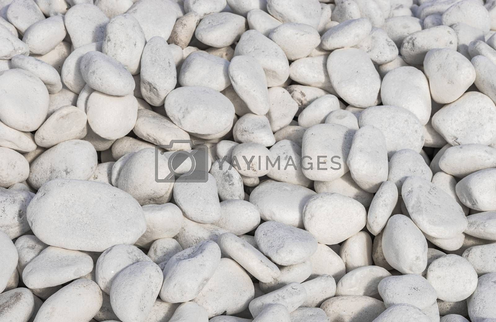 Close-up of white pepples stones background texture