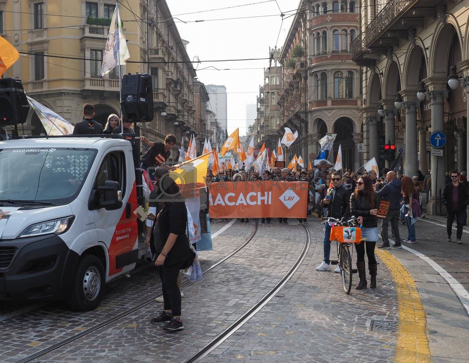 TURIN, ITALY - OCTOBER 12, 2019: LAV (Lega Anti-Vivisezione, meaning Anti-Vivisection Society) nonviolent protest rally to save macaques