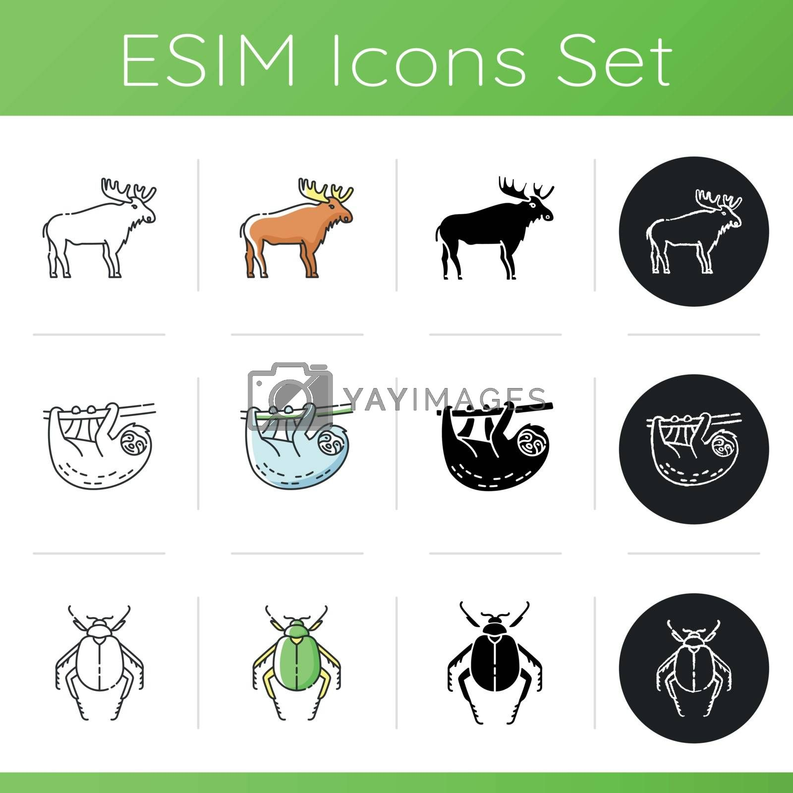 Animals icons set. Linear, black and RGB color styles. Different wildlife, diverse fauna. Common and exotic animal species. Scarab beetle, moose and sloth. Isolated vector illustrations