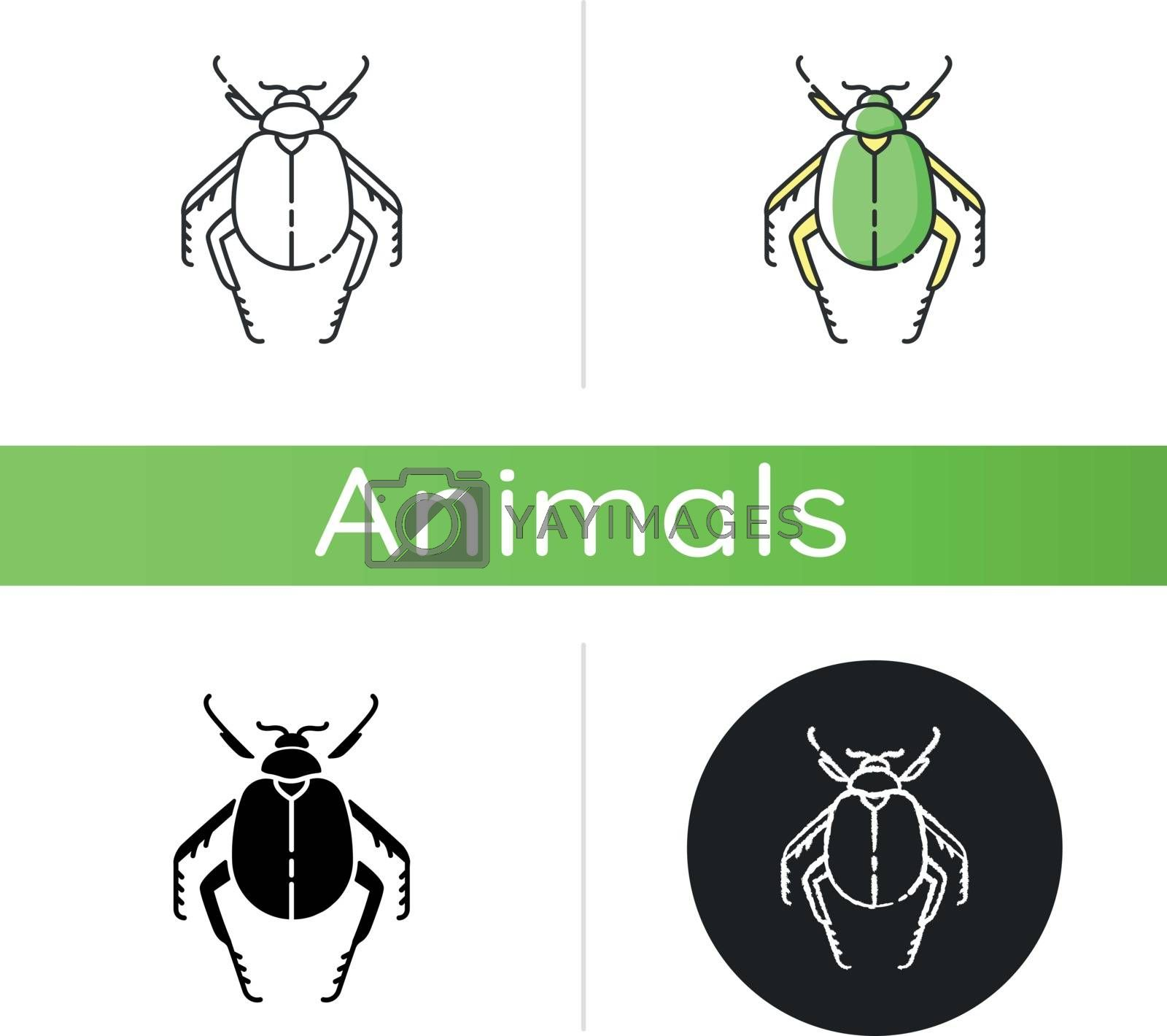Scarab beetle icon by bsd