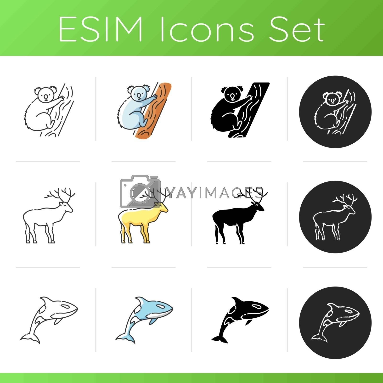 Various animals icons set. Linear, black and RGB color styles. Common forest wildlife and exotic fauna. Cute koala bear, killer whale and majestic deer. Isolated vector illustrations
