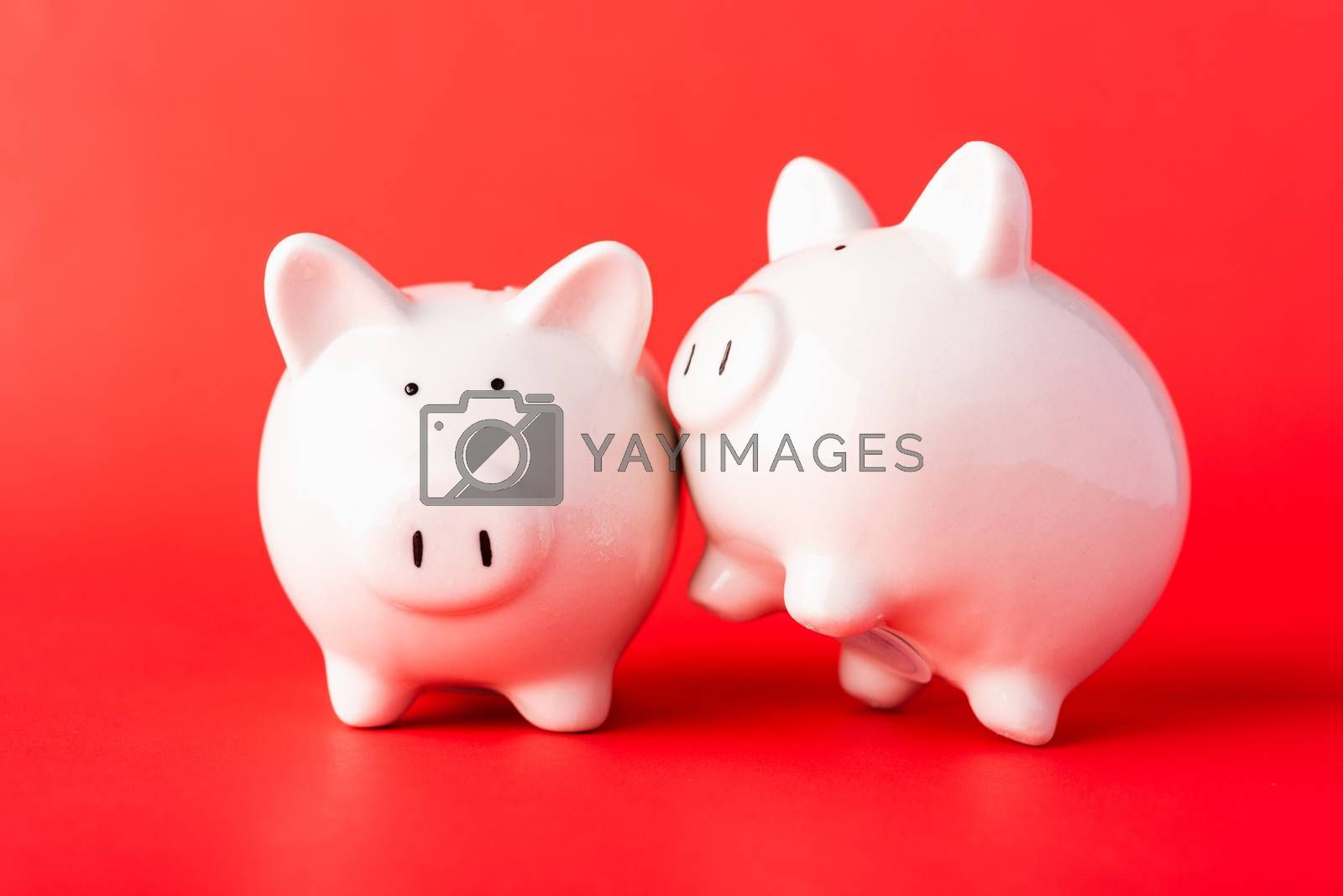 International Friendship Day, Front two small white fat piggy bank, studio shot isolated on red background and copy space for use, Finance, deposit saving money concept