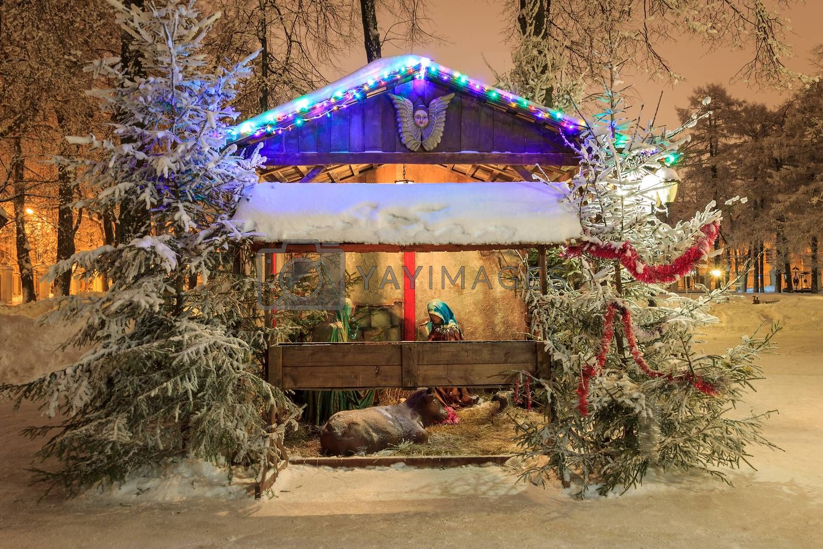 Christmas nativity scene at night park at winter season with garlands and spruces