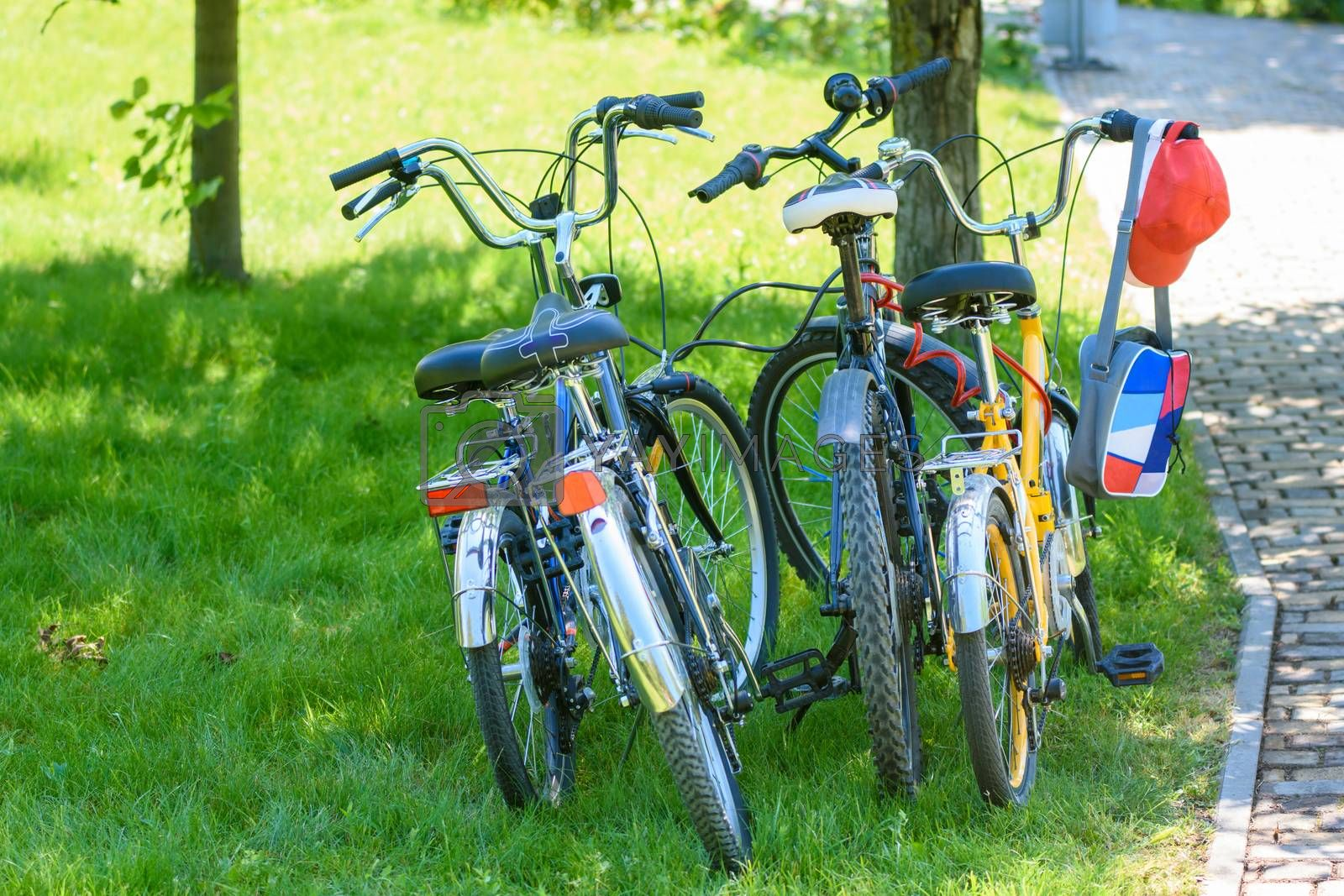 four bikes of different sizes standing on the lawn in the park
