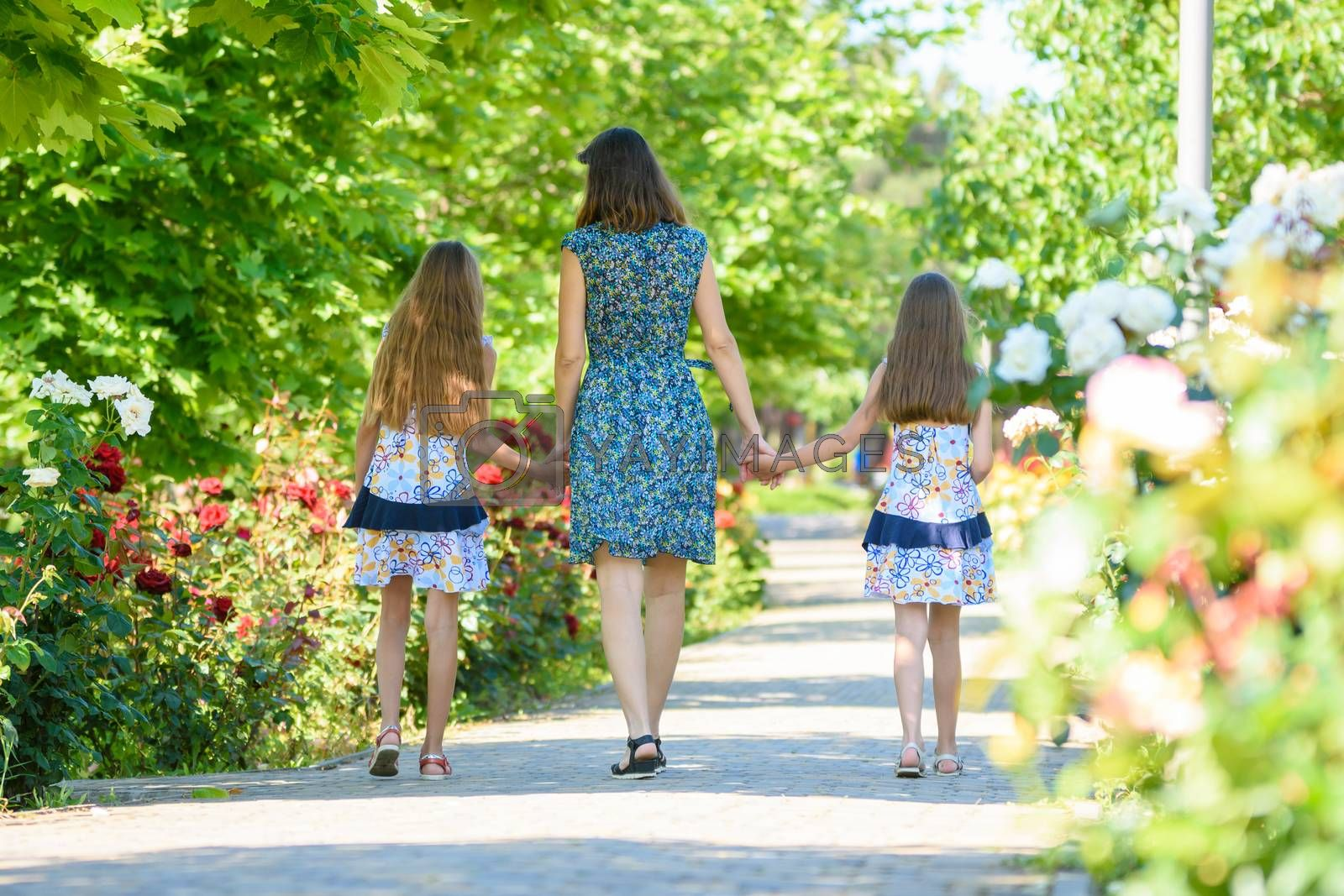 Mom walks down the path in the flowering garden by the hand with her two daughters back in the frame