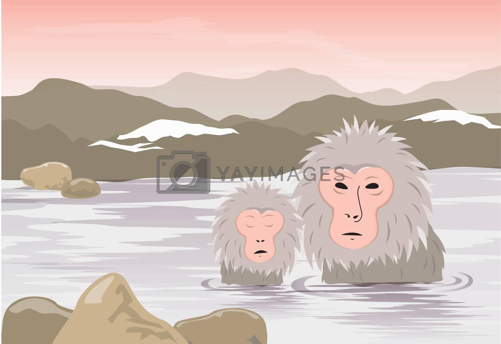 Snow Monkeys, Japanese Macaques bathe in onsen hot springs of Nagano, Japan Vector.