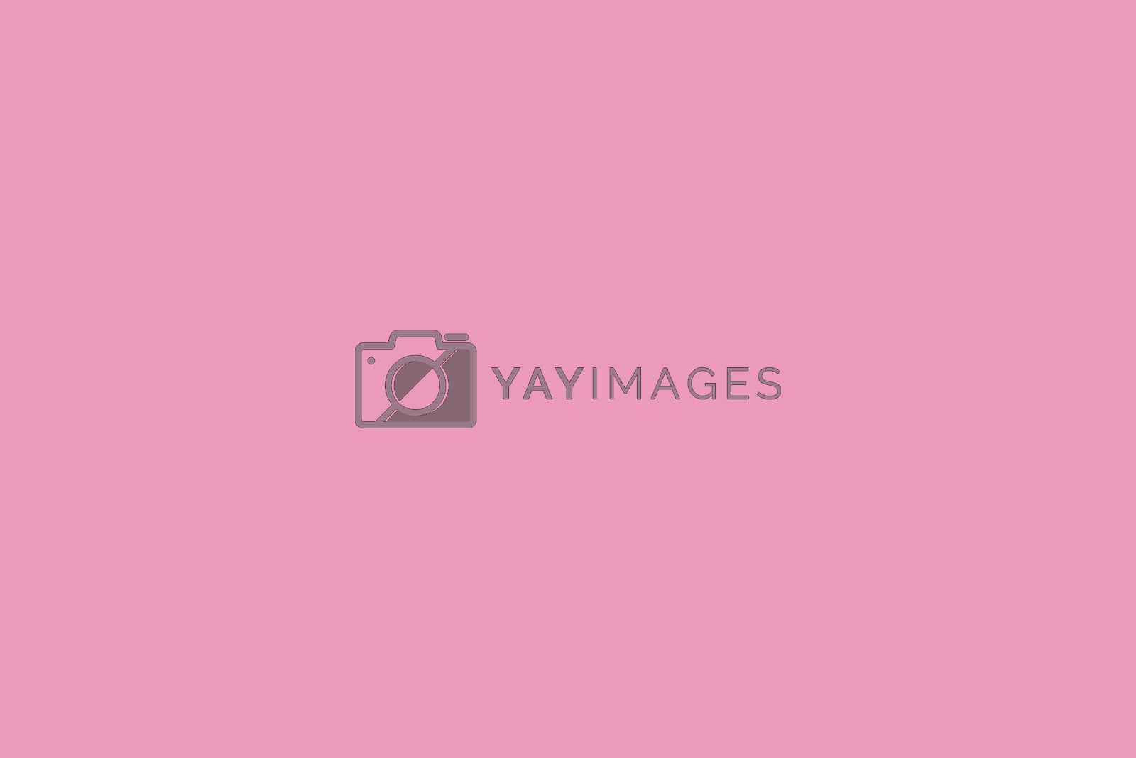 Pink colour tone. Abstract dan pattern background concept