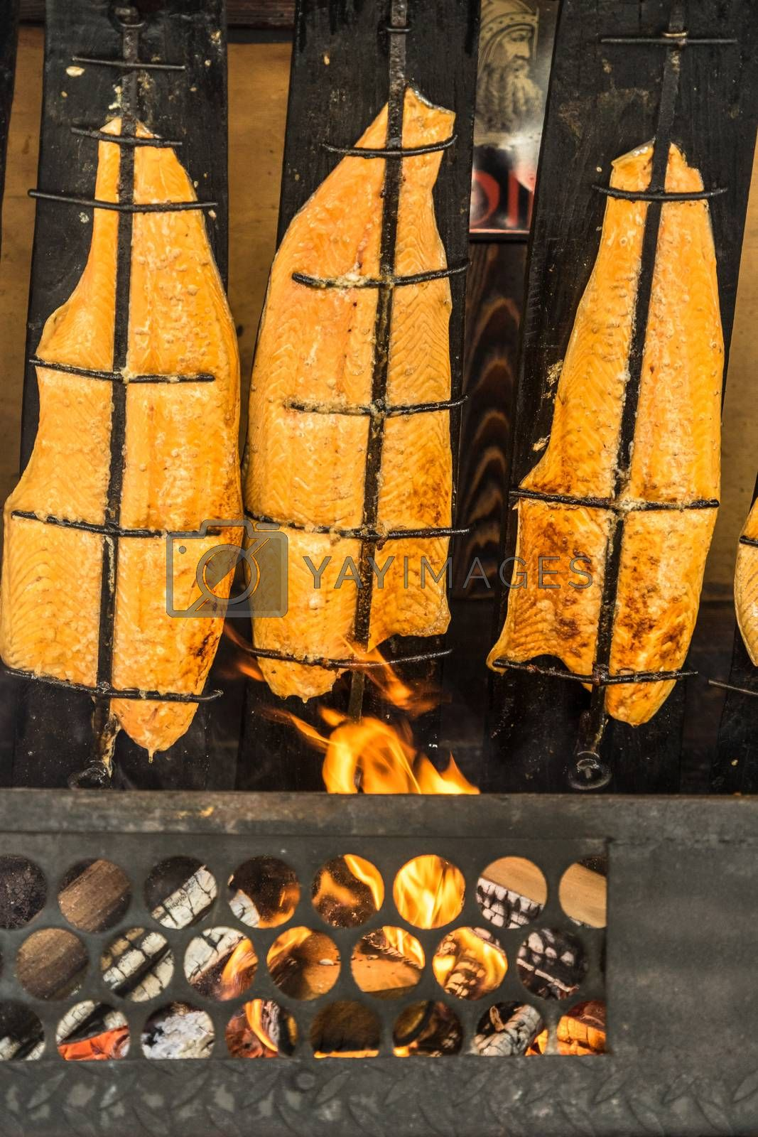 Preparation of flame salmon over the open fire of an open fireplace loaded with wood, Germany