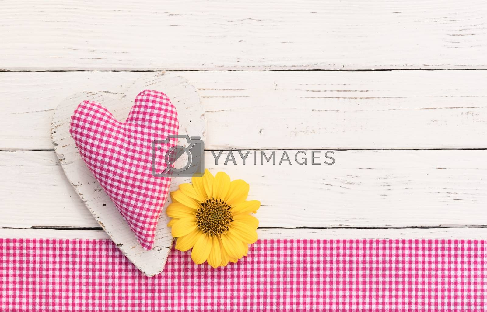 Valentines day pink heart with blossom on white wood background