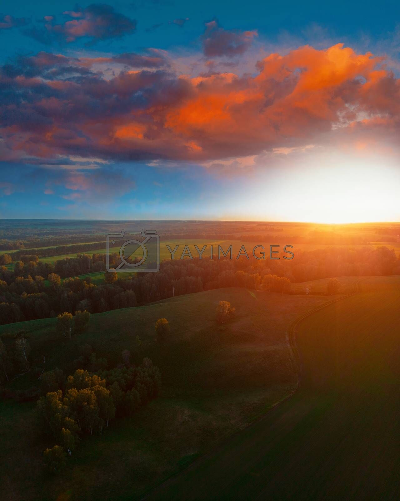 Top aerial view of green fields and meadows in evening summer with beauty sunset sky