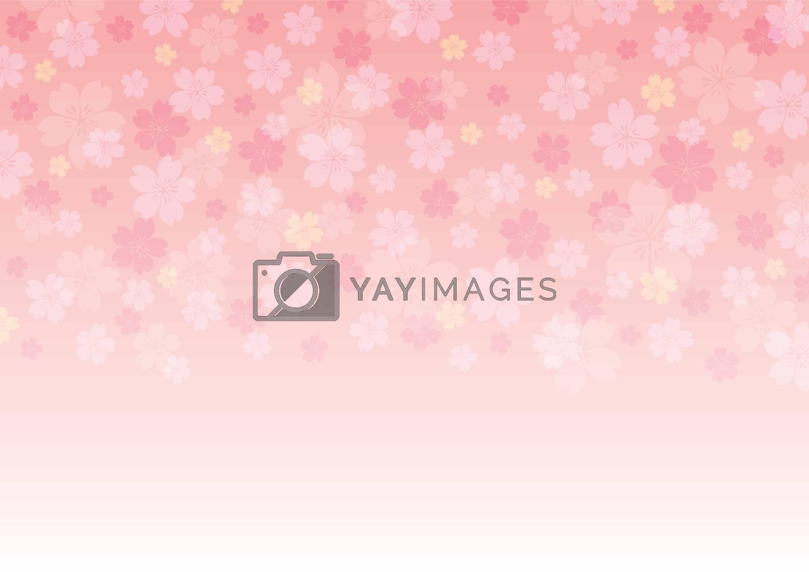 Cherry blossoms background illustration. Spring season banner.