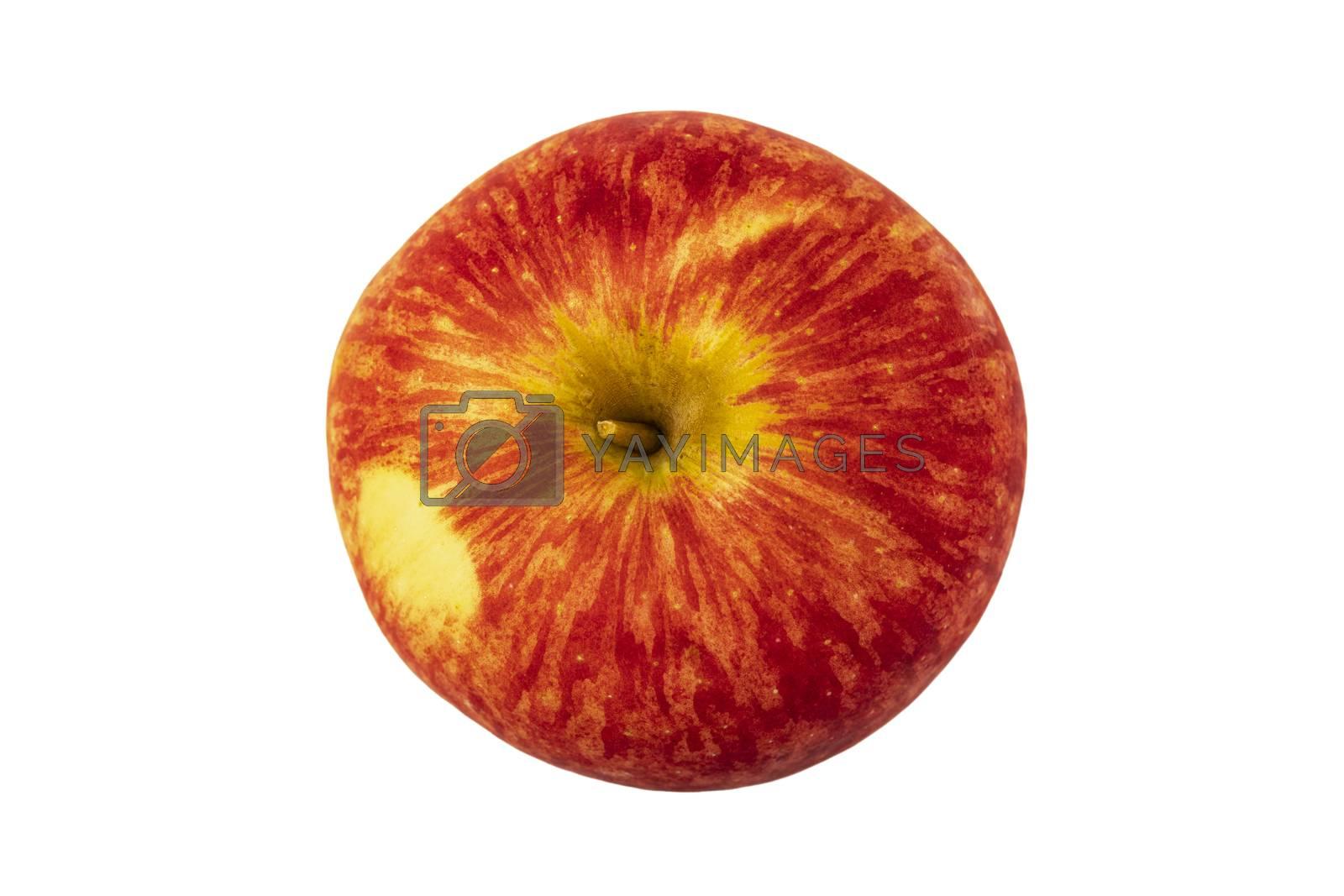 Closeup of gala apple on white background.