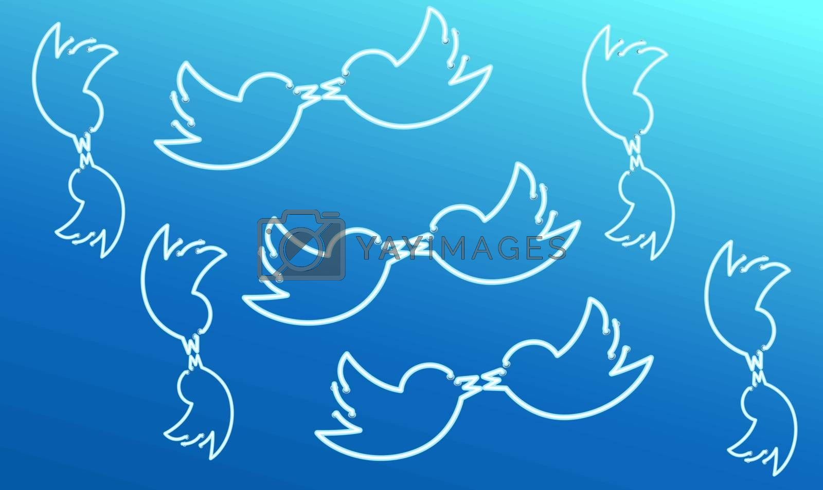 birds are loving on abstract background