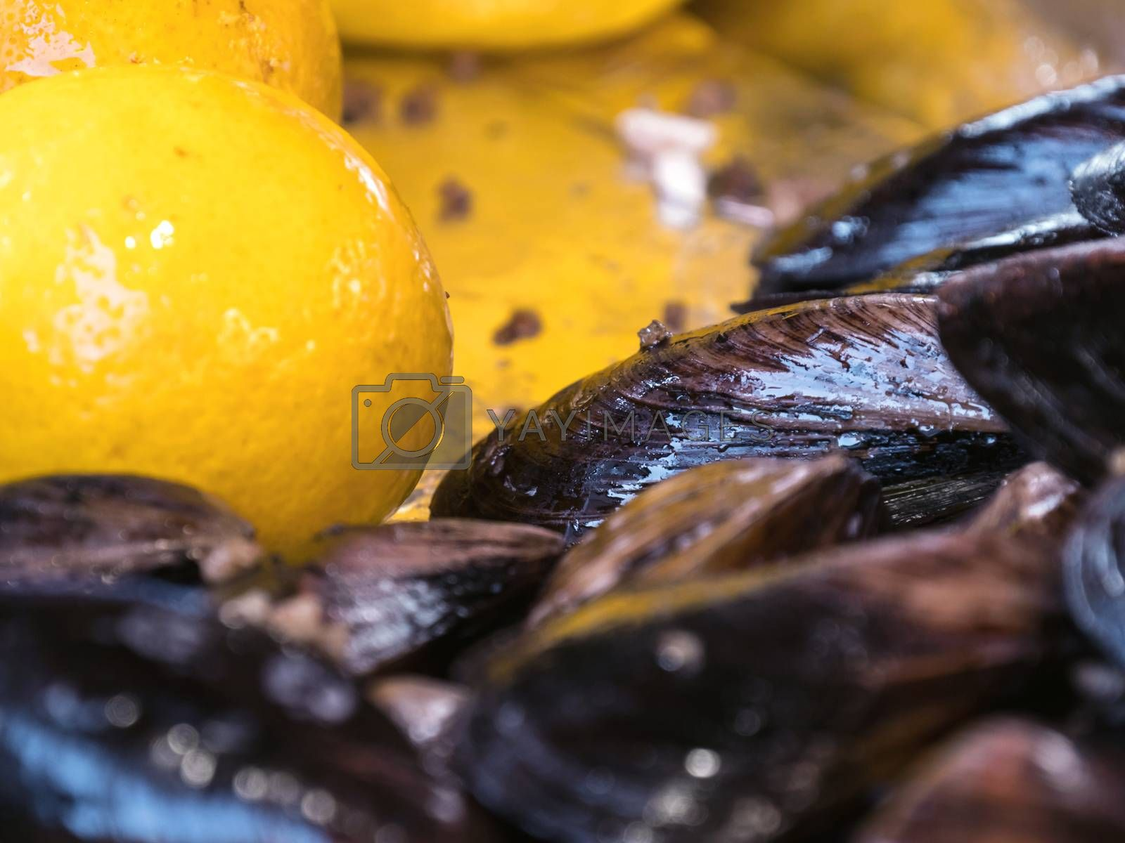 Cooked mussels in a bowl with lemon. Stuffed mussels and lemon. Mussels close up on a tray in the window with lemon. Tray with mussels and lemons. Street trade.