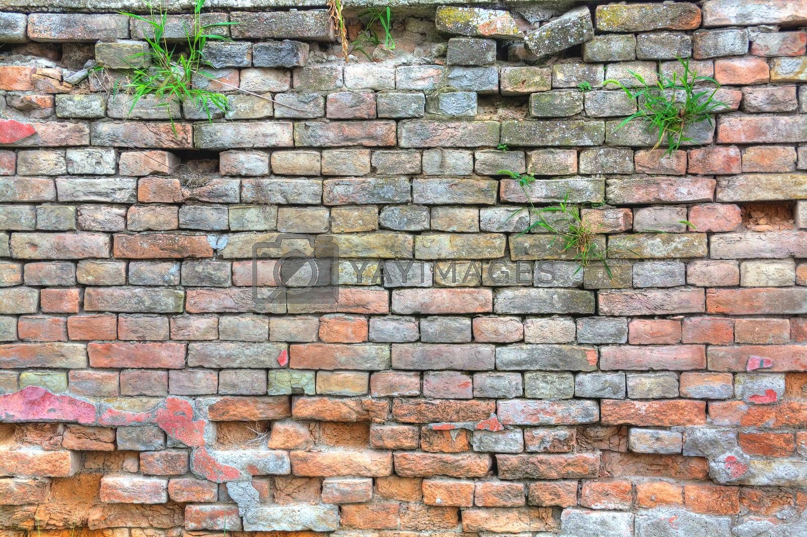 Hdr image of an old wall