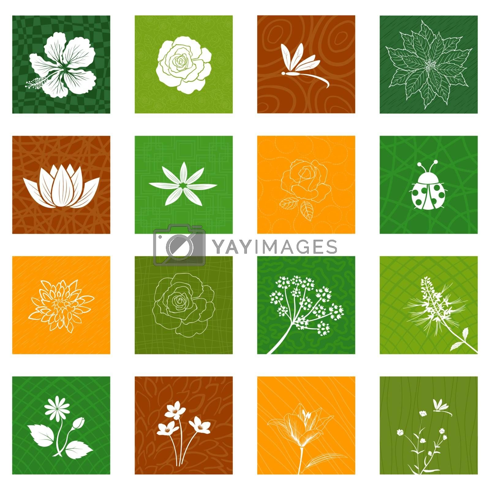 White flowers and leaves icons set isolated on different background for decorative graphic design by PIMPAKA