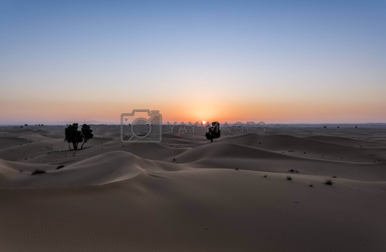 Sun rising above the desert of dunes, Dubai Emirates, United Arab Emirates