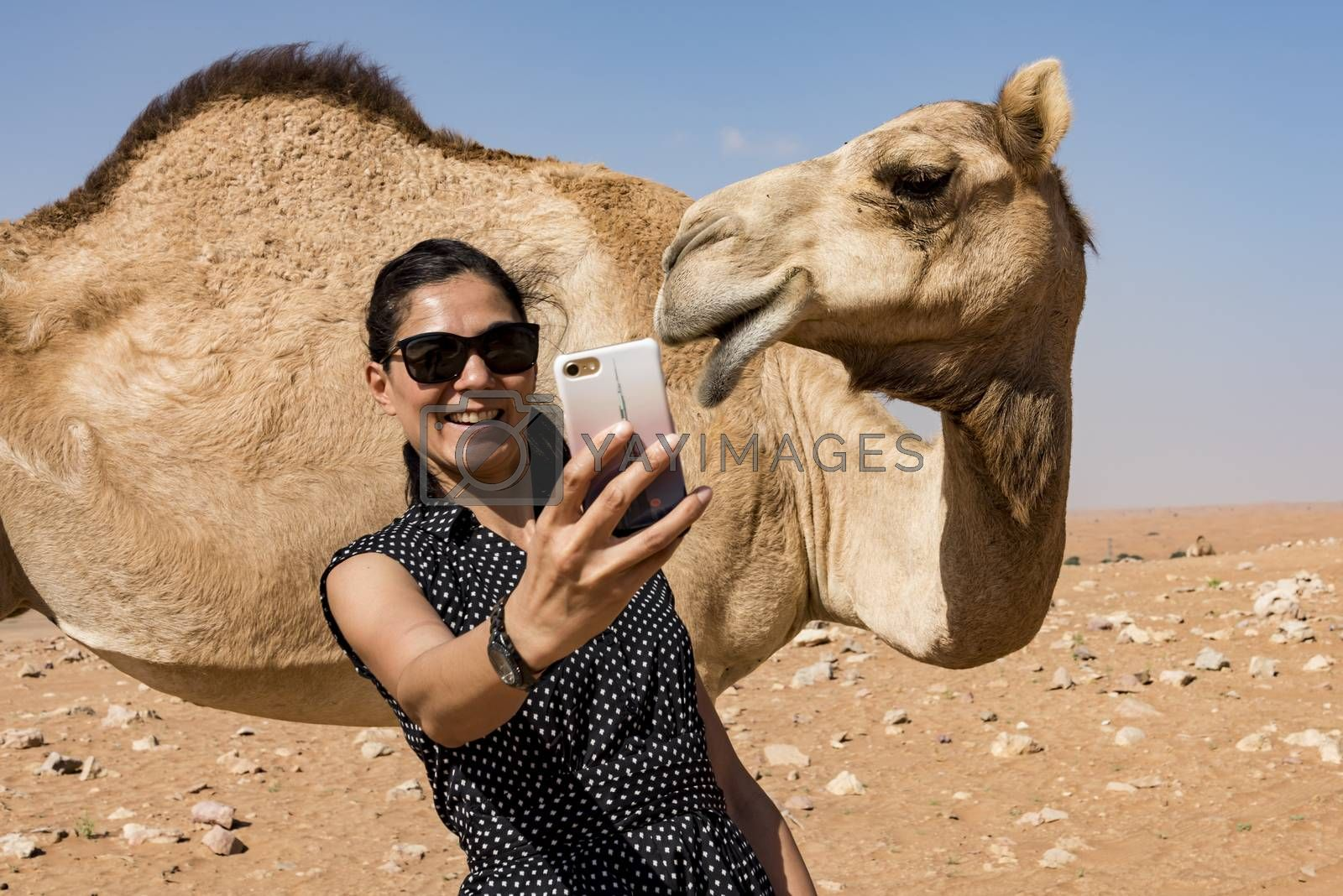 Woman taking selfie with a camel in the desert during a safari