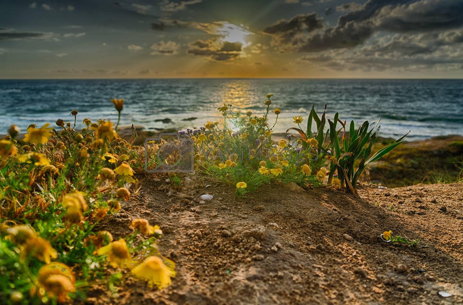 Romantic sunset on sea coast of mediterranean vacation