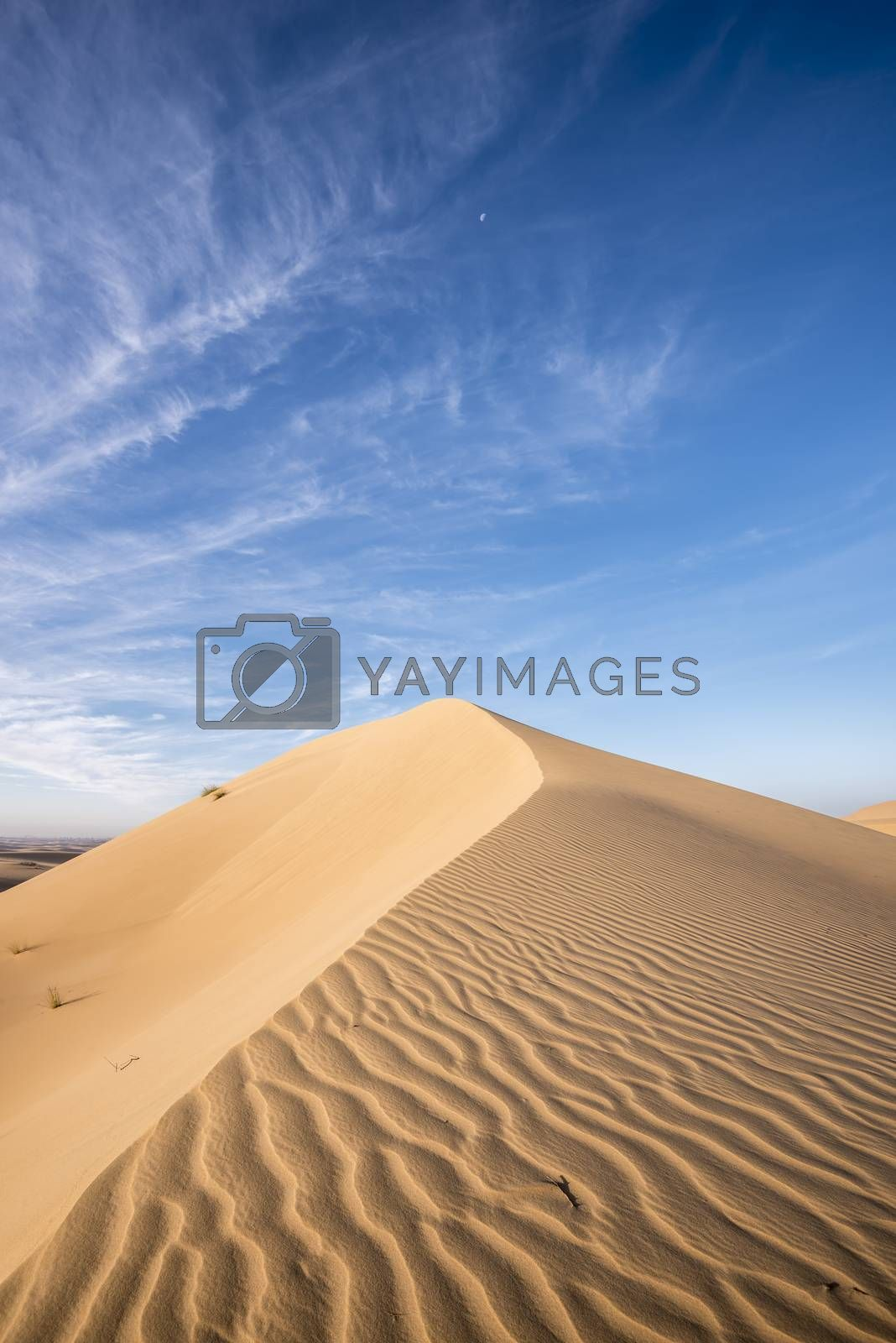 Top of a dunes of red sand agaisnt blue sky and few clouds, Dubai Emirates, United Arab Emirates, UAE, arabian peninsula
