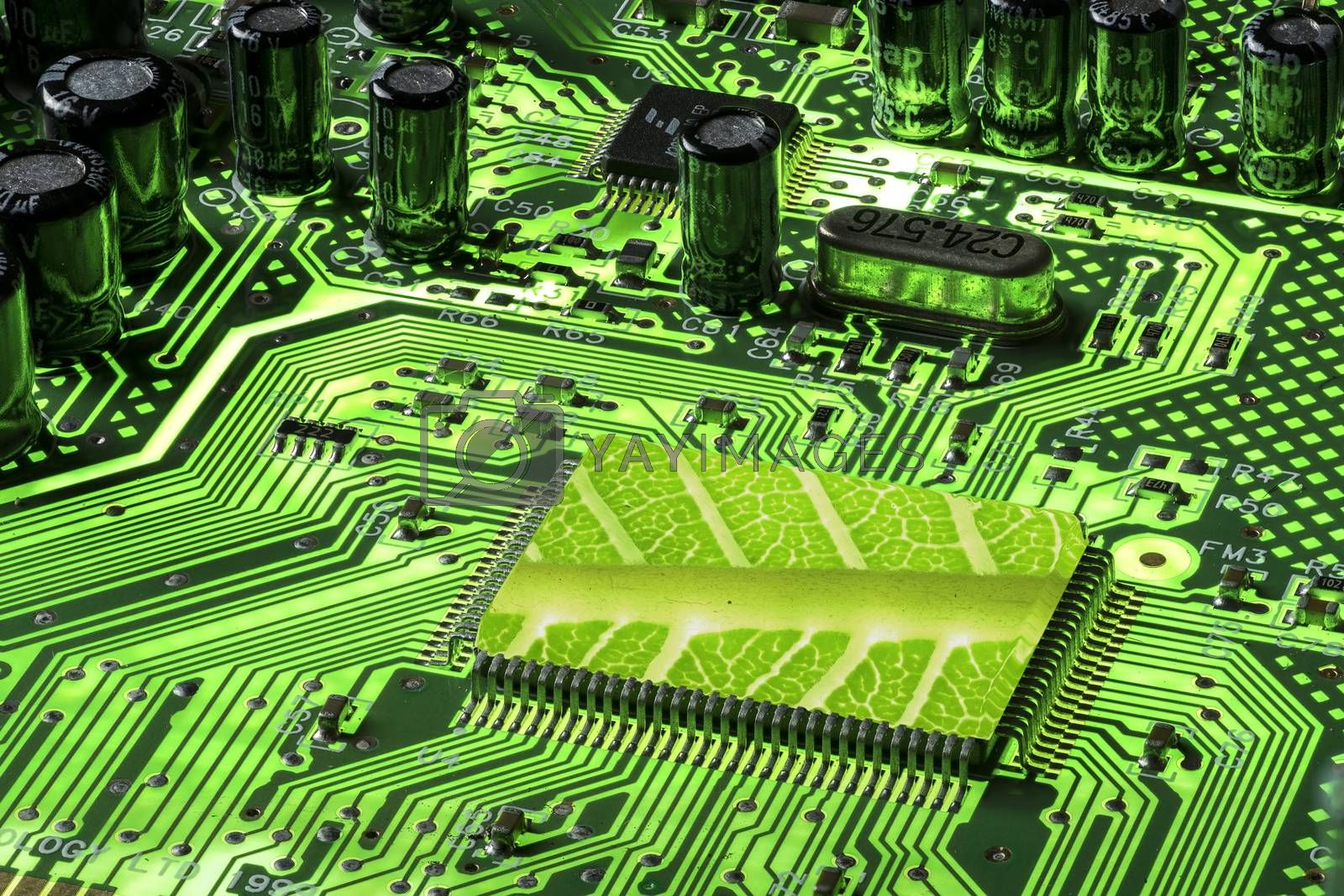 Green Mother board fluorescent with CPU with leaf texture by GABIS