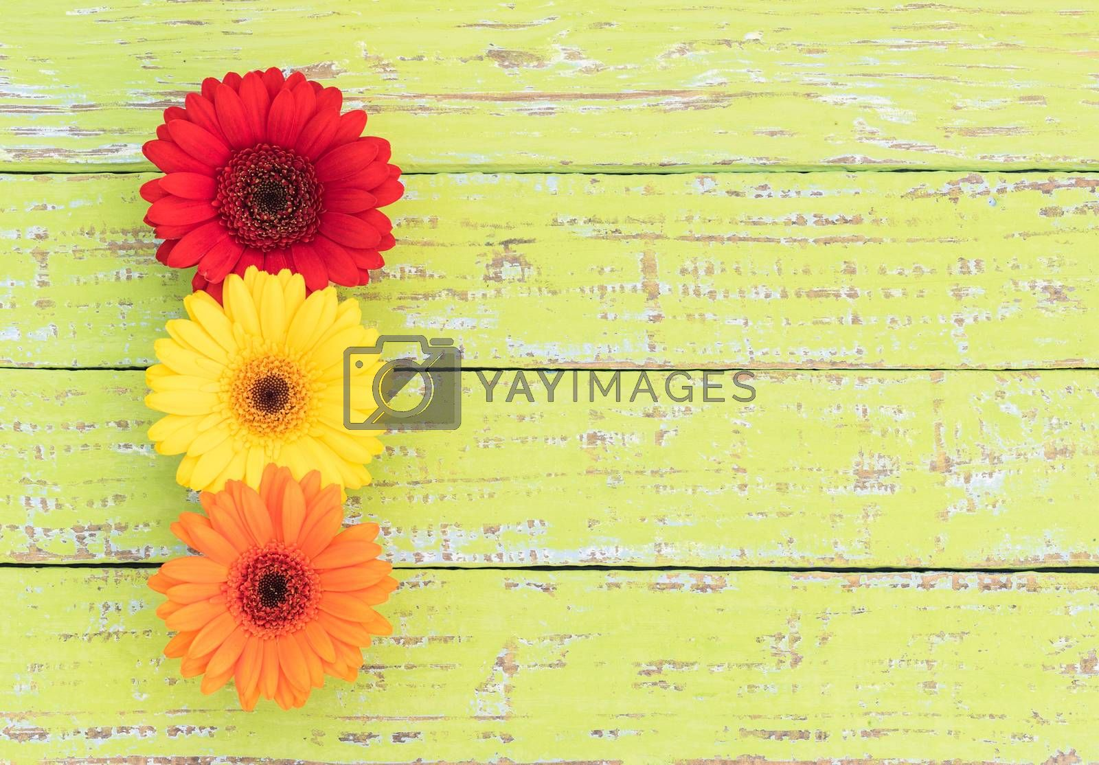 Red, yellow and orange flower arrangement on wood background with copy space
