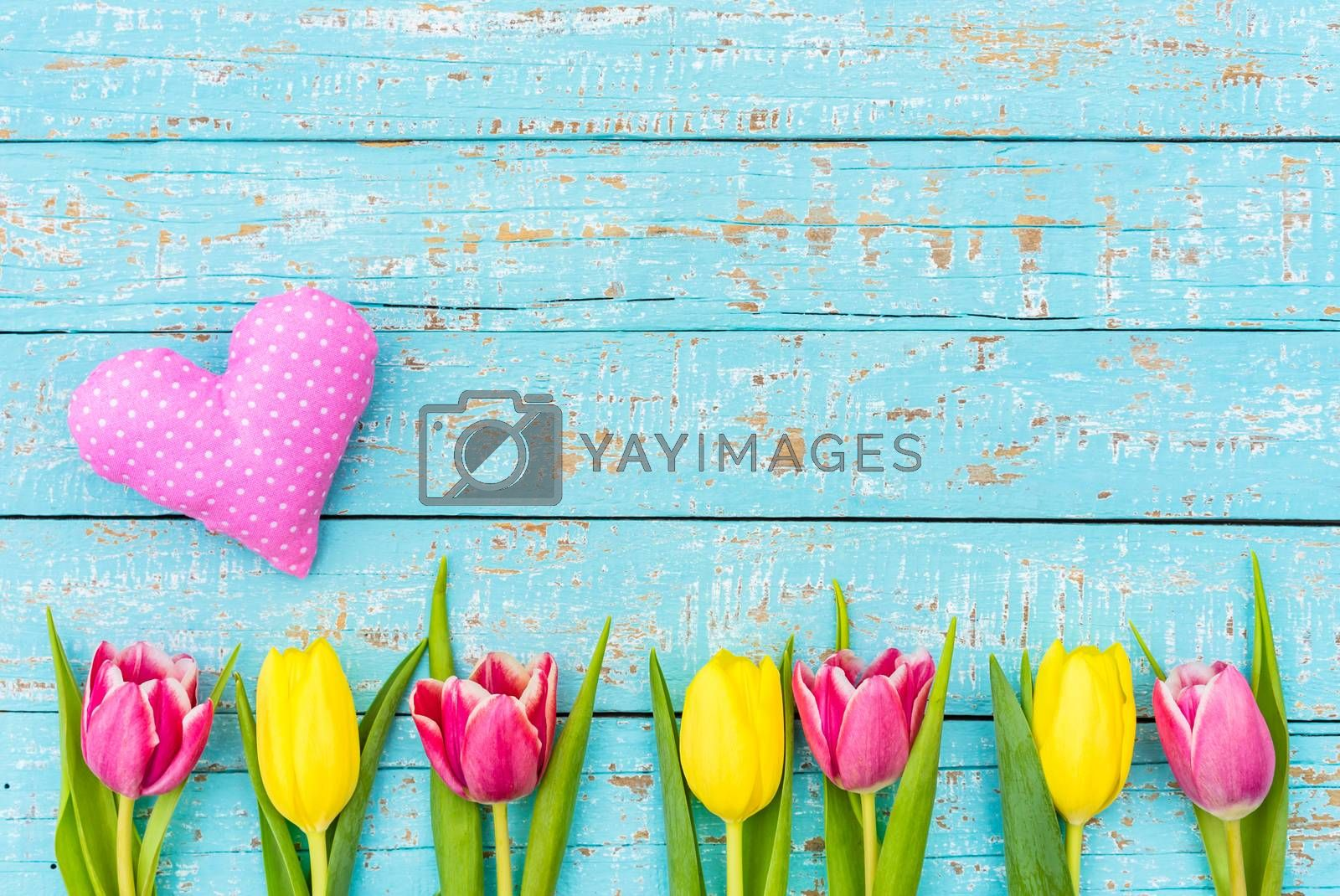 Romantic heart and tulips flowers on turquoise wooden background with copy space