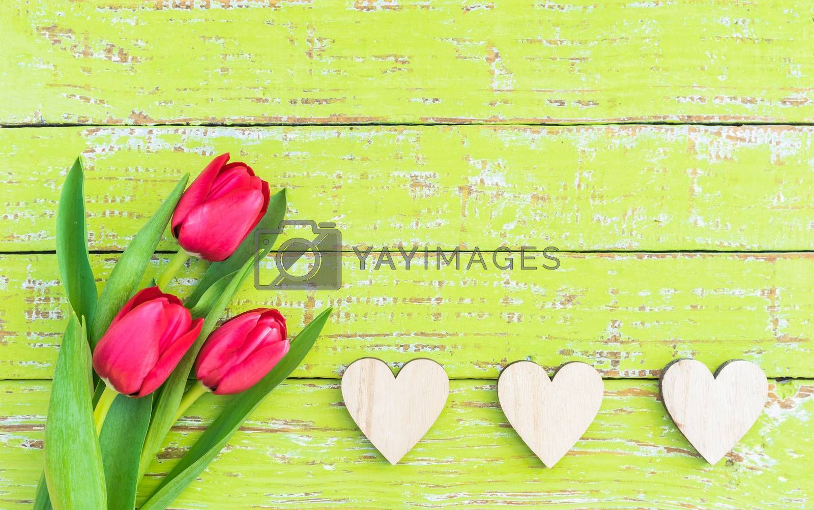 Romantic Mothers day background with fresh tulip flowers and hearts border