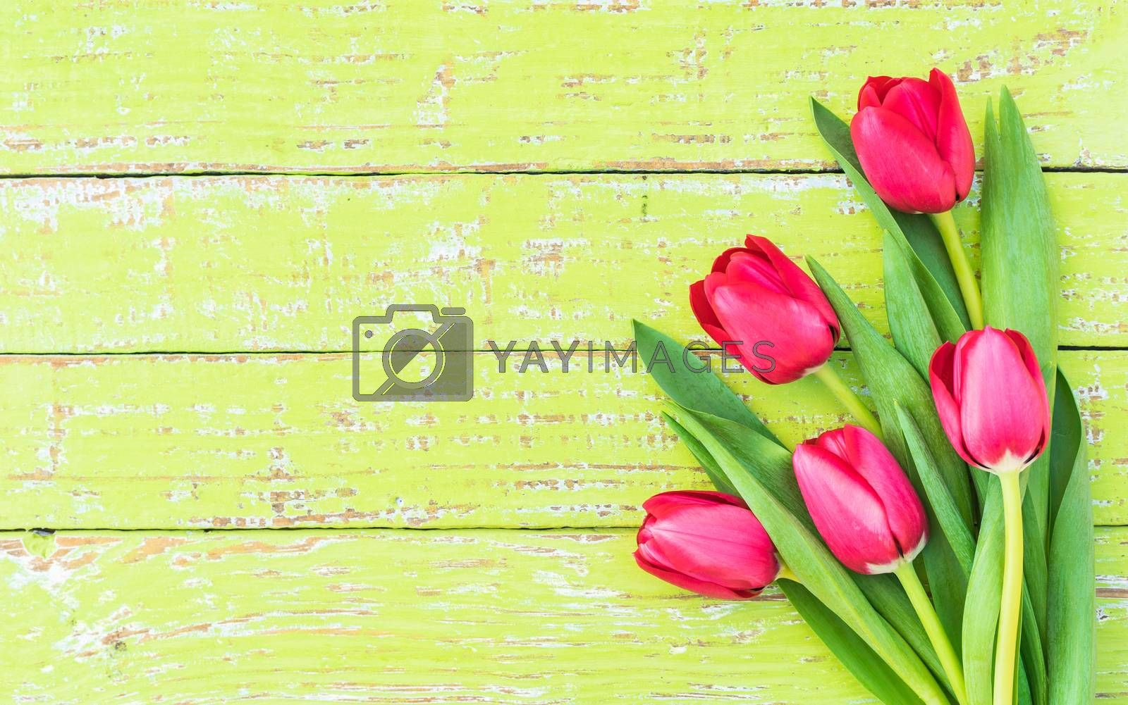Flowers arrangement with red tulips on green wooden background with copy space