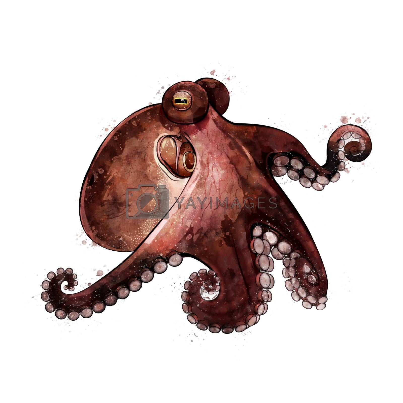 Octopus, isolated raster illustration in watercolor style on a white background.