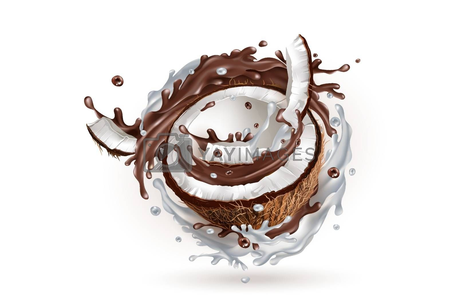 Half a coconut in a milky and chocolate splash on a white background. Realistic vector illustration.