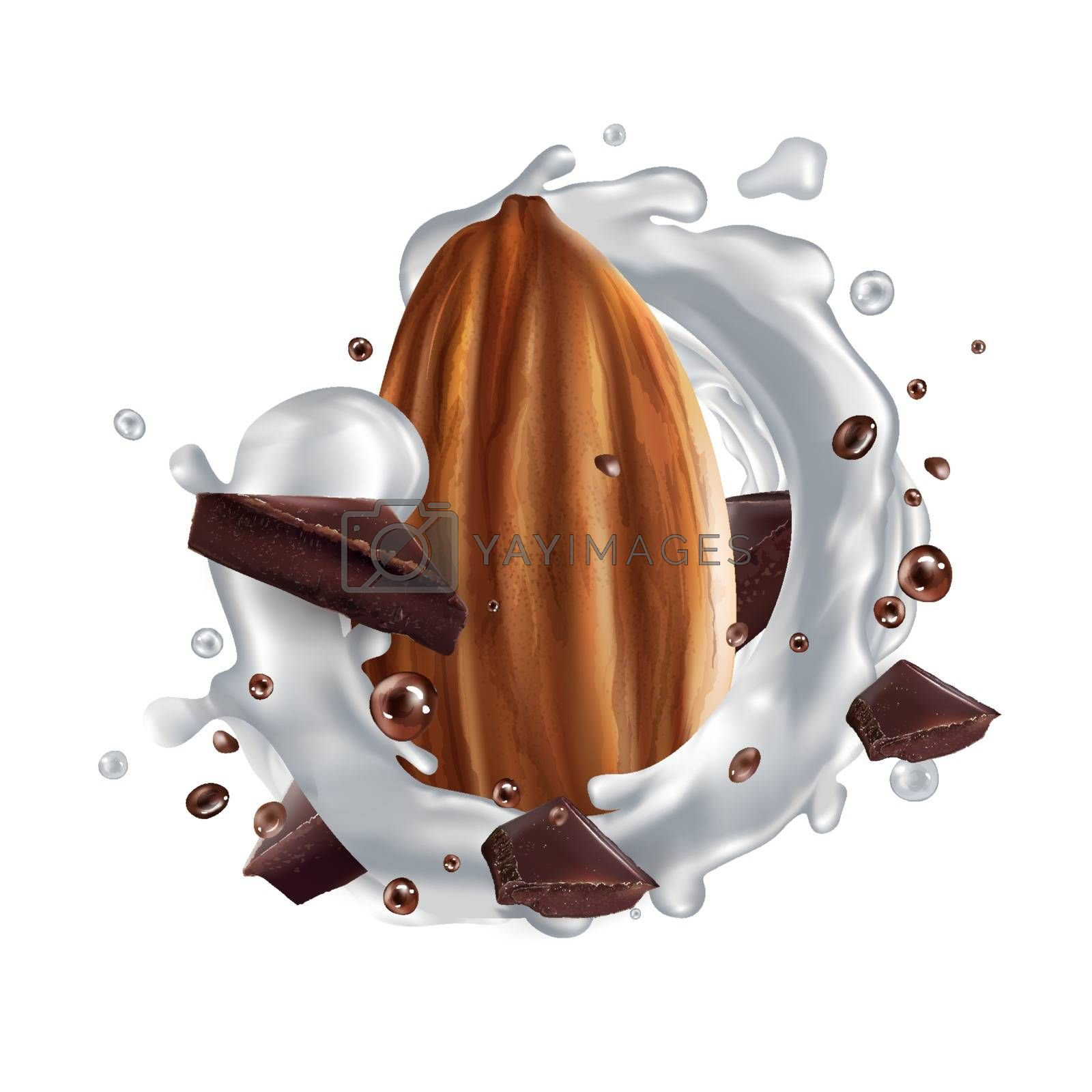 Almond, pieces of dark chocolate and a splash of milk. Realistic vector illustration.