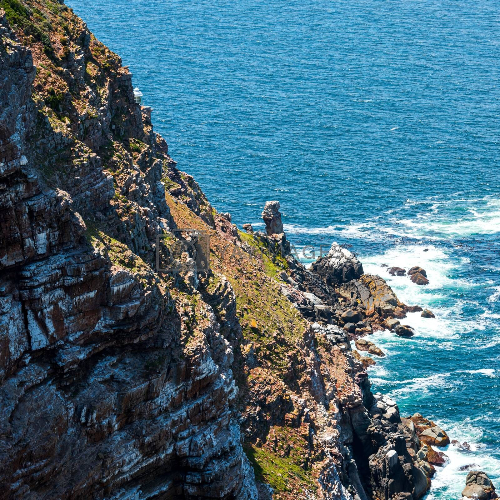 Looking down a very steep cliff to the ocean below at the Cape of Good Hope.