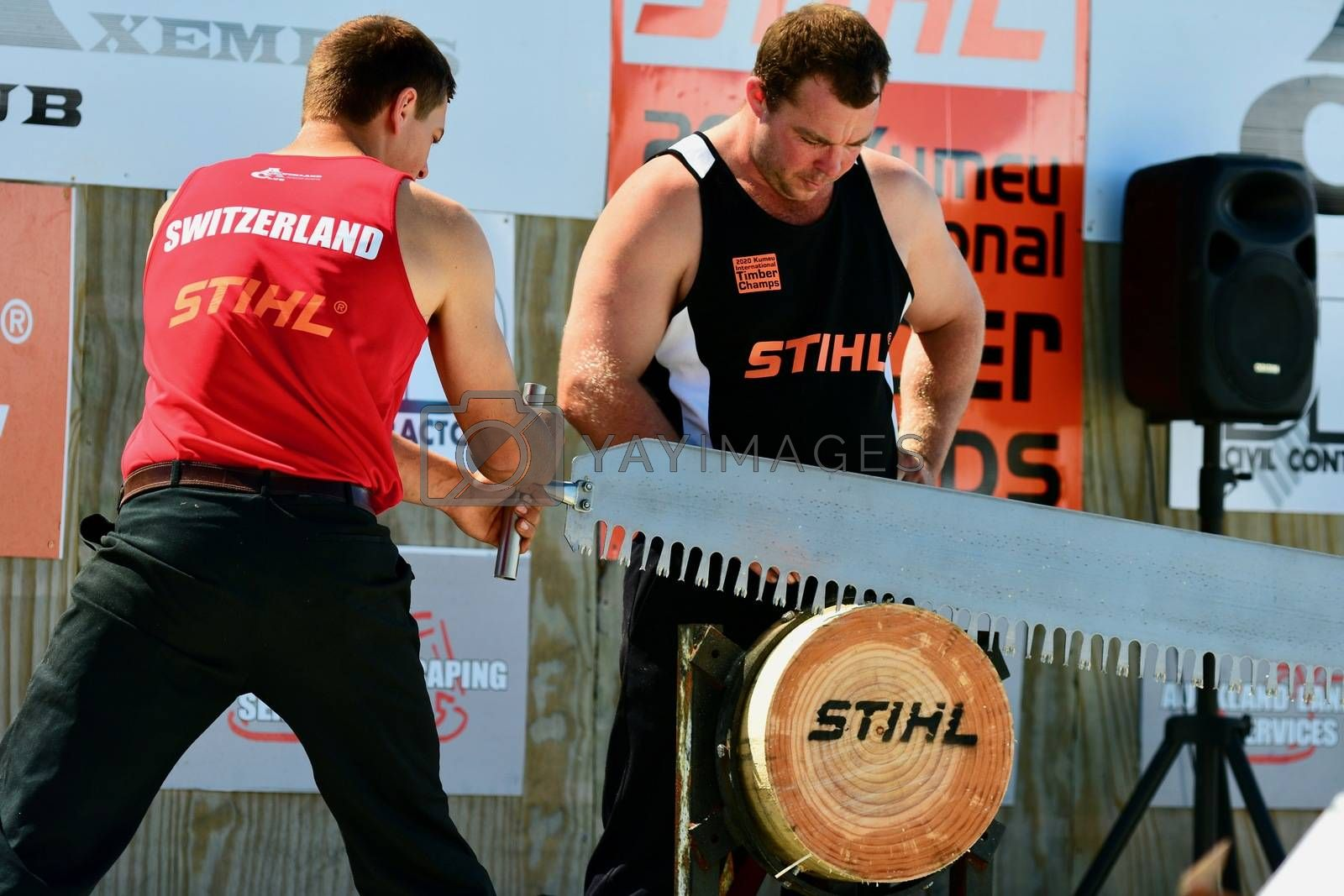 International Timber Sports (the world Champion Axemen); agricultural show